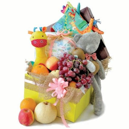 Baby Playbook And Bear Soft Toy Hamper For New Born
